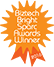 Biztech Bright Sparc Awards icon