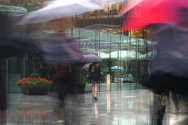 Copyright Matthew Howarth - Umbrellas -cropped