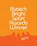 Biztech Bright Sparc Awards icon
